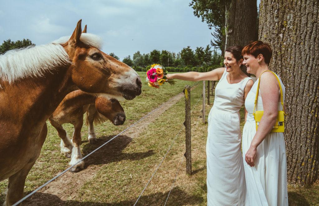 holebi paarden hoeve trouwen boeket