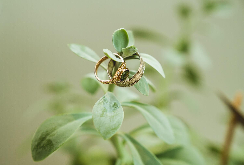 trouwen out fort hoboken ringen